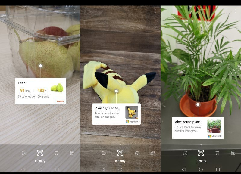 image recognition of food, toys and plants